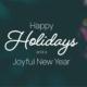 Happy Holidays-Fluidtime